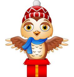 cute cartoon owl on gift box vector image
