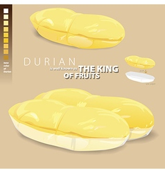 Durian is meaning of the king of thai fruits vector
