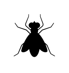 Fly sign icon vector
