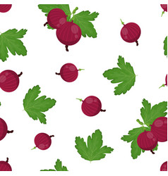 gooseberries seamless pattern isolated on white vector image
