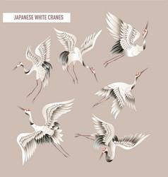 japanese white crane in batik style vector image