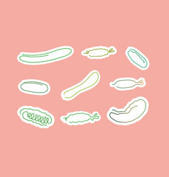 one line art style cucumber abstract food vector image