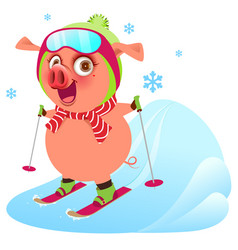 Pink funny merry pig symbol 2019 year skiing ski vector