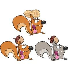 Squirell cartoon vector