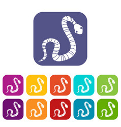 Striped snake icons set flat vector