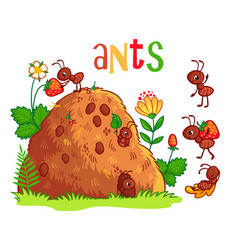 With an anthill and ants vector