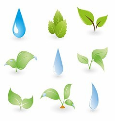Leaf and Water Drops on a Blue Background vector image vector image