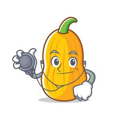 Doctor butternut squash character cartoon vector
