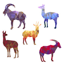 polygonal silhouettes animals vector image