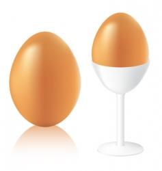 Vector eggs vector