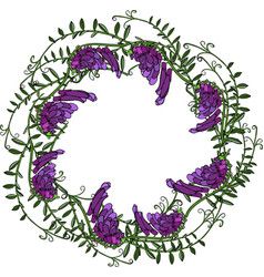 Wreath of mouse purple peas and green leaves vector