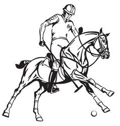 equestrian polo player riding a horse vector image