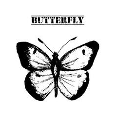 Butterfly hand drawn vector
