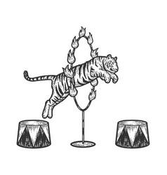 Circus tiger jumping through a ring fire vector