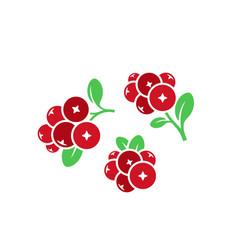 cranberry icon set vector image