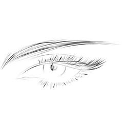 female eye drawing long eyelashes vector image
