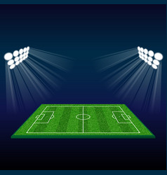 football field with lights vector image