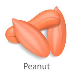 Peanut mockup realistic style vector