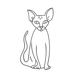 Peterbald icon in outline style isolated on white vector