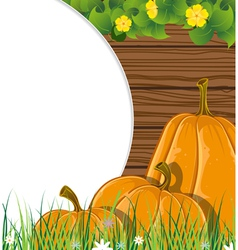 Pumpkins on the wooden background vector