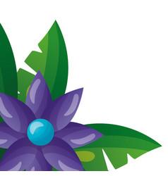 purple exotic flower foliage leaves vector image