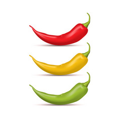 realistic detailed 3d whole hot chili pepper set vector image