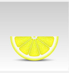 Realistic lemon slice vector