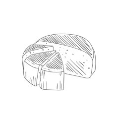 Round Cheese Cut In Segments Hand Drawn Realistic vector
