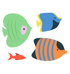 sea ocean fish species isolated aquarium habitats vector image