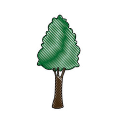 tree for forest park and plant natural image vector image