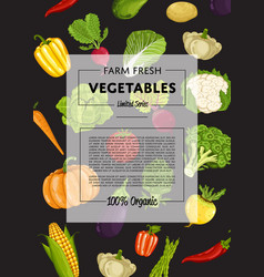 Farm fresh vegetable banner with natural product vector