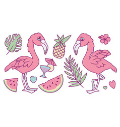 flamingo mix vector image