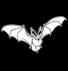 flying bat outline drawing on white background vector image