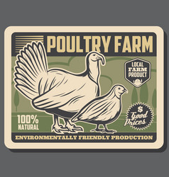 poultry farm meat market products retro poster vector image