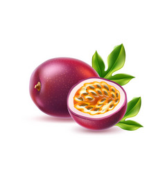 realistic passionfruit with seed green leaf vector image