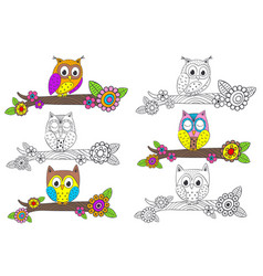 set of isolated funny owl on branch vector image