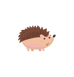 cute hedgehog woodland cartoon animal vector image