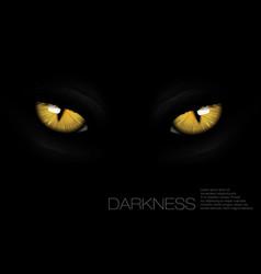 cat eyes in darkness vector image