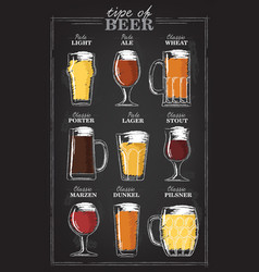 beer types a visual guide to types of beer vector image