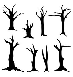 dead trees isolated on white background vector image