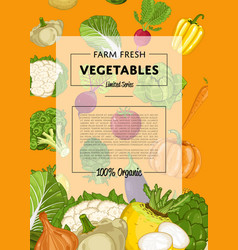 fresh farm food banner with vegetable vector image