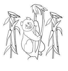 panda and bamboo branches vector image