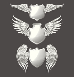 Set of angelic or bird wings with heraldic vector