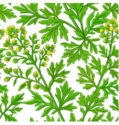 wormwood plant pattern on whte background vector image