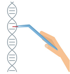 dna sequencing genome information saving vector image