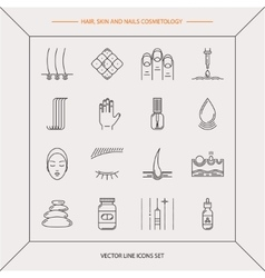 Set of cosmetology icons vector image