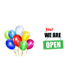 Balloons and inscription we are open vector