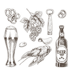 Beer food and brunch of hop graphic vector