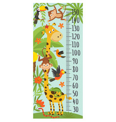 growth measure with giraffe jungle animals vector image