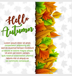 hello autumn banner template vector image